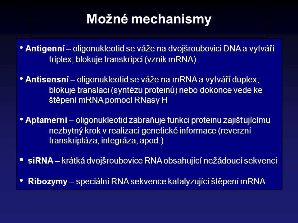Možné mechanismy • Antigenní – oligonukleotid se váže na dvojšroubovici DNA a vytváří triplex; blokuje transkripci (vznik mRNA)
