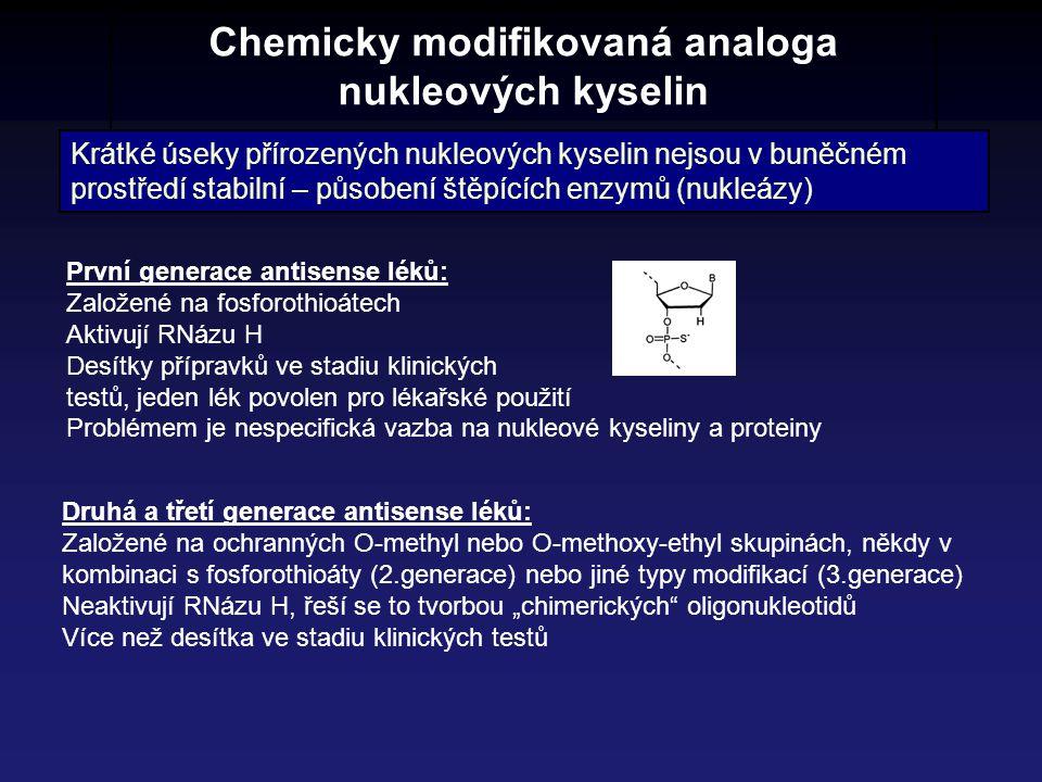 Chemicky modifikovaná analoga nukleových kyselin