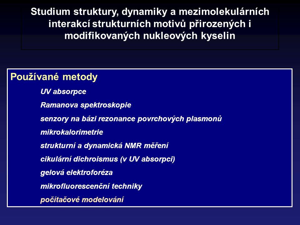 Studium struktury, dynamiky a mezimolekulárních interakcí strukturních motivů přirozených i modifikovaných nukleových kyselin