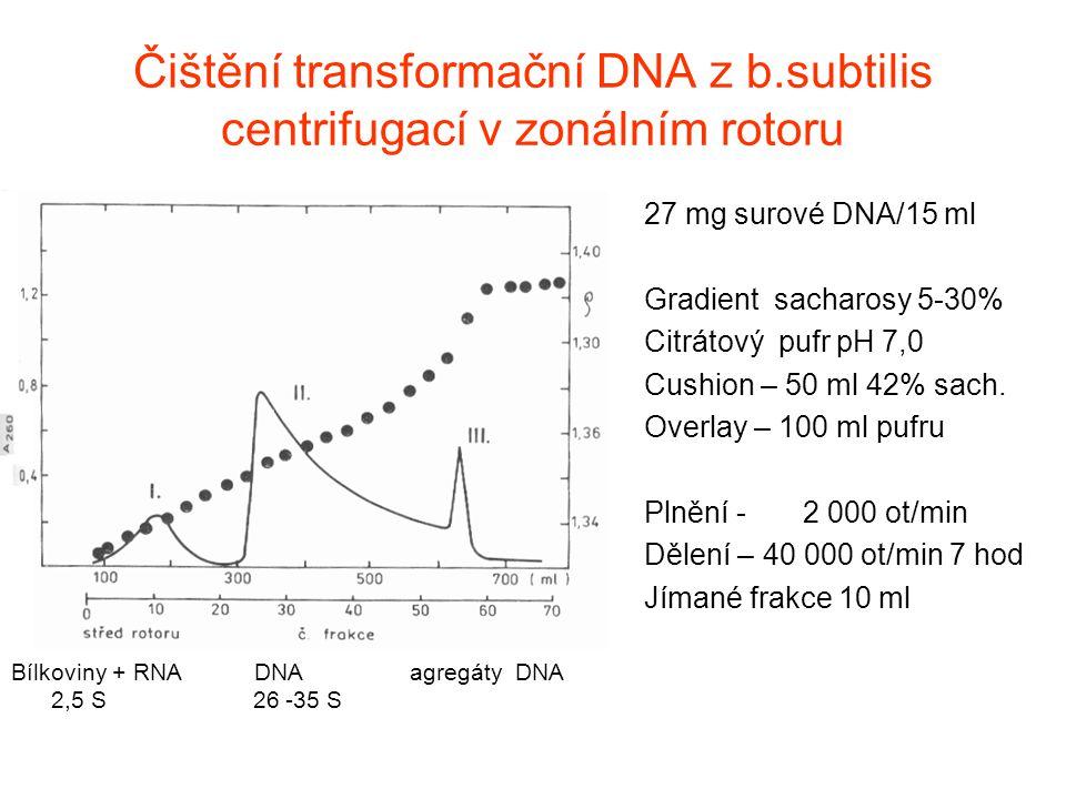 Čištění transformační DNA z b.subtilis centrifugací v zonálním rotoru