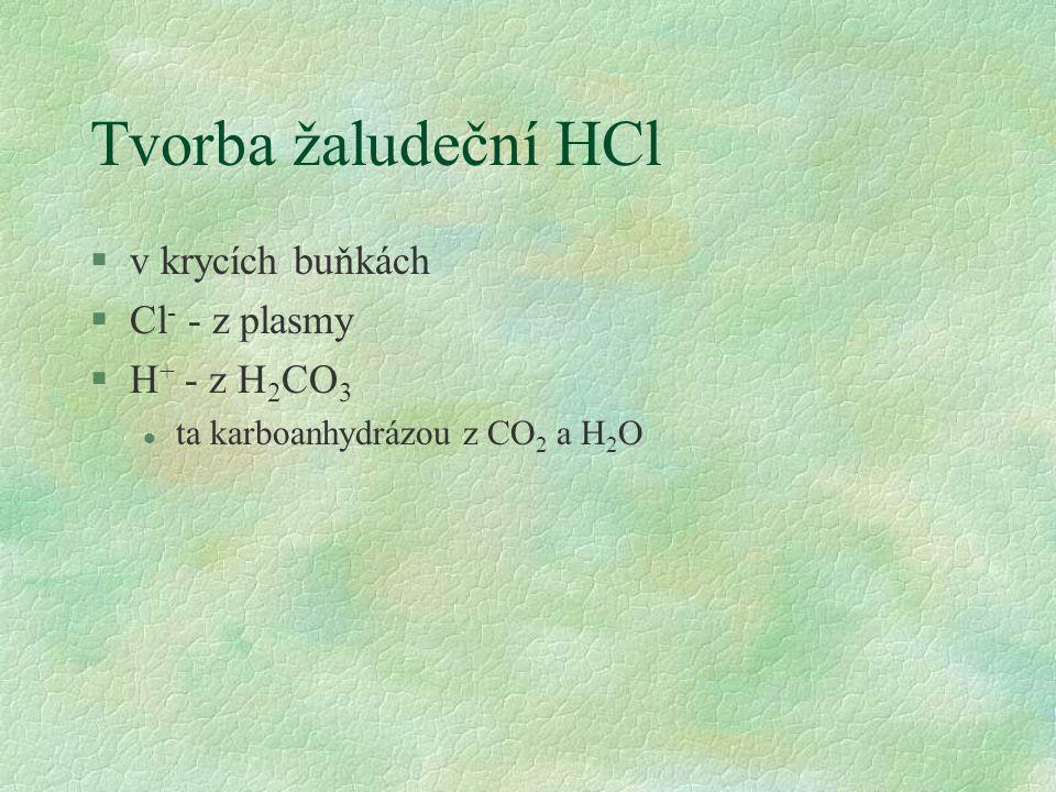 Tvorba žaludeční HCl v krycích buňkách Cl- - z plasmy H+ - z H2CO3