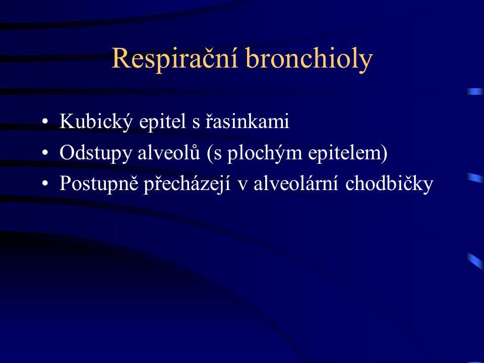 Respirační bronchioly