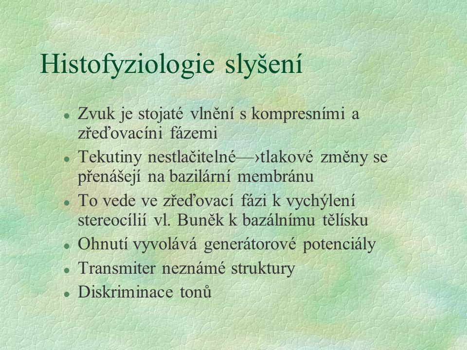 Histofyziologie slyšení
