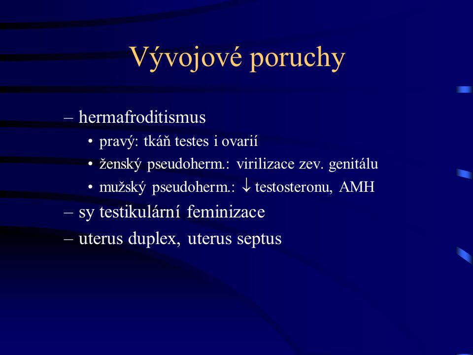 Vývojové poruchy hermafroditismus sy testikulární feminizace