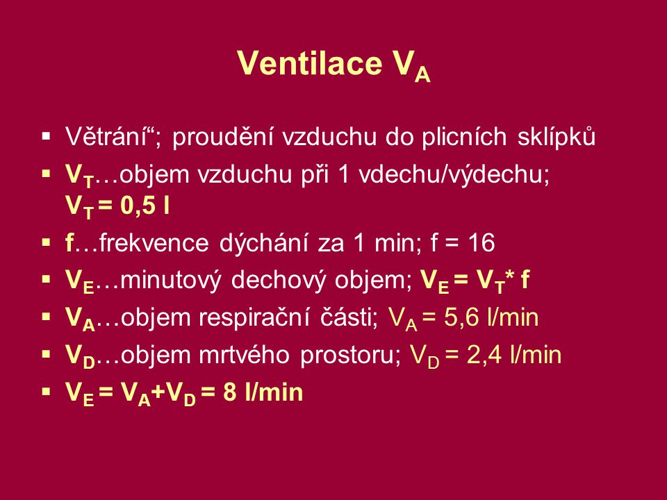 Ventilace VA Větrání ; proudění vzduchu do plicních sklípků