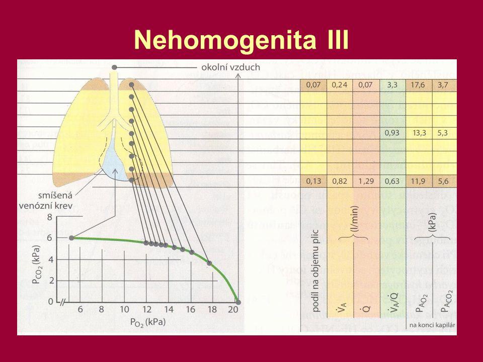 Nehomogenita III