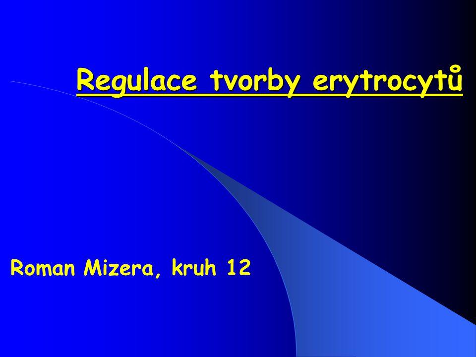 Regulace tvorby erytrocytů