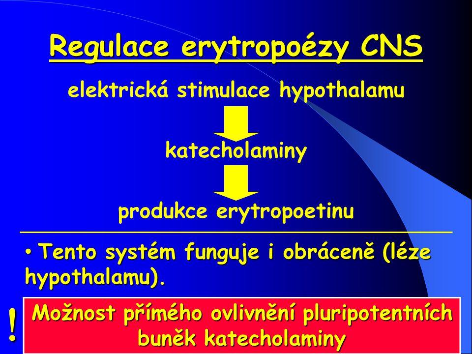 Regulace erytropoézy CNS