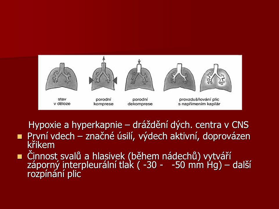Hypoxie a hyperkapnie – dráždění dých. centra v CNS