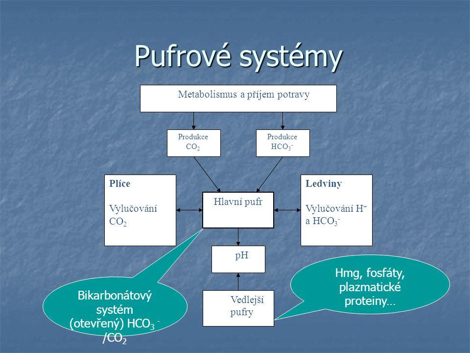 Pufrové systémy Hmg, fosfáty, plazmatické proteiny…