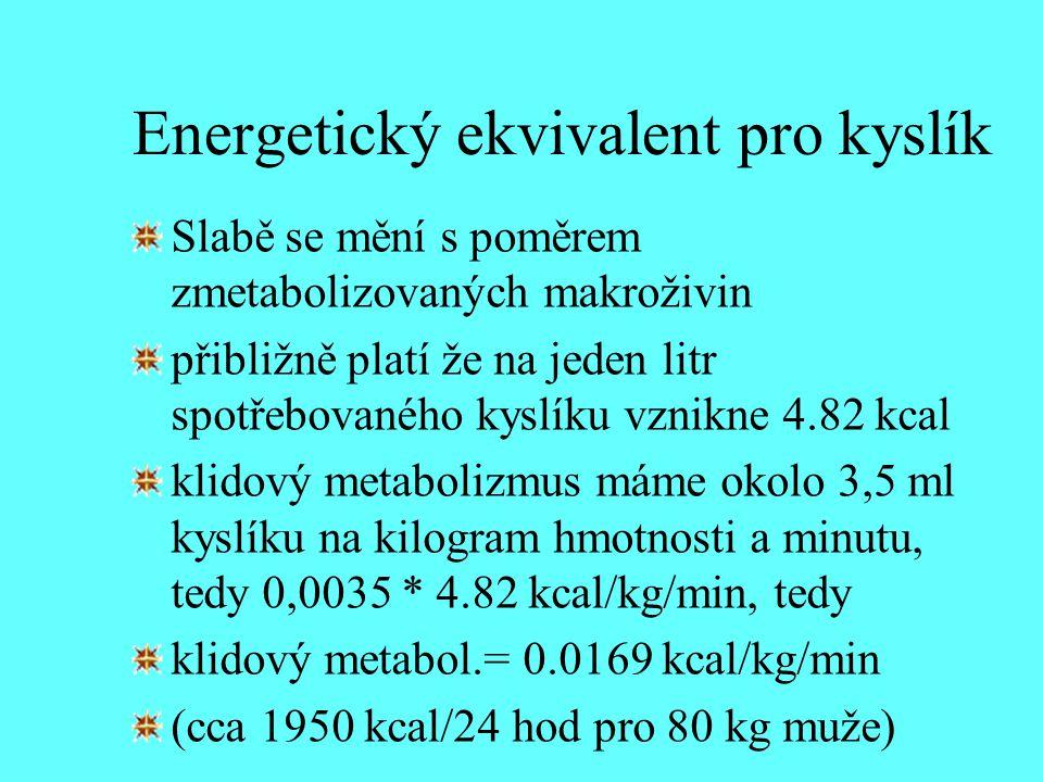 Energetický ekvivalent pro kyslík