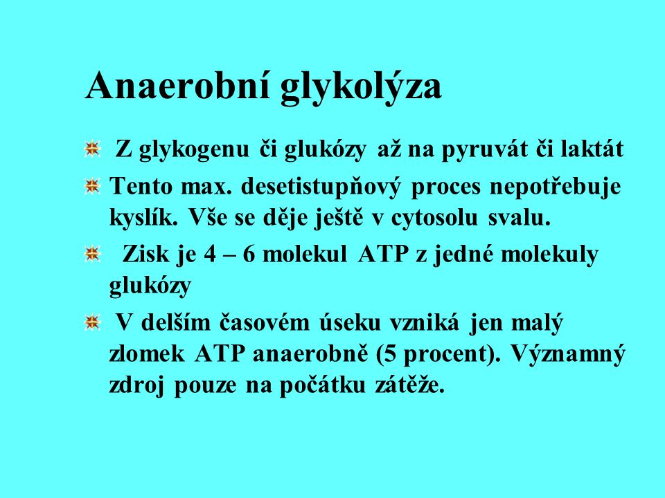 Anaerobní glykolýza Z glykogenu či glukózy až na pyruvát či laktát