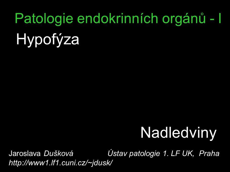 Patologie endokrinních orgánů - I