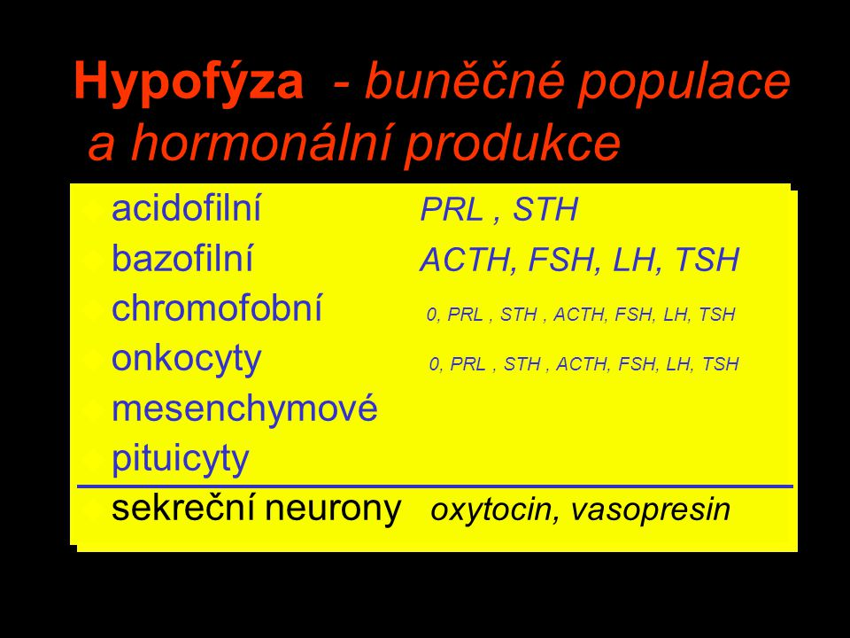 Hypofýza - buněčné populace a hormonální produkce