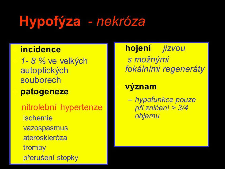 Hypofýza - nekróza hojení jizvou incidence