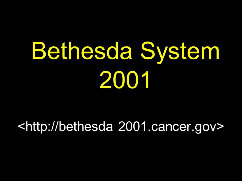 <http://bethesda 2001.cancer.gov>