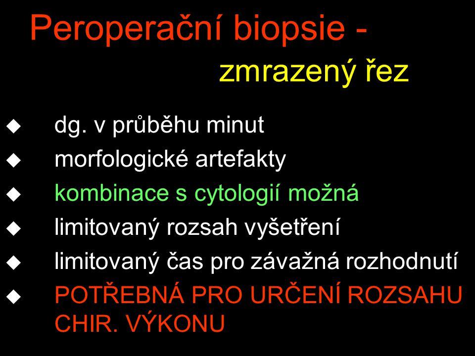 Peroperační biopsie - zmrazený řez
