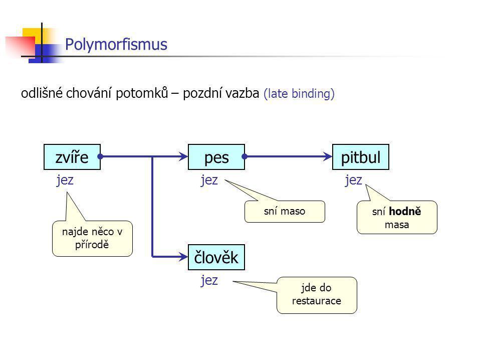 Polymorfismus zvíře pes pitbul člověk