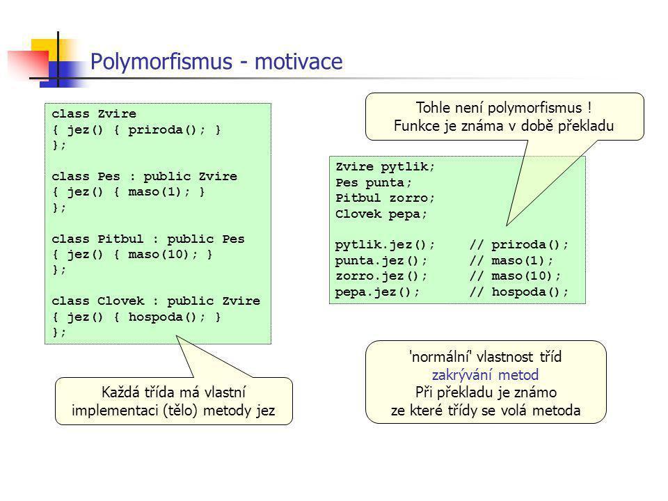 Polymorfismus - motivace