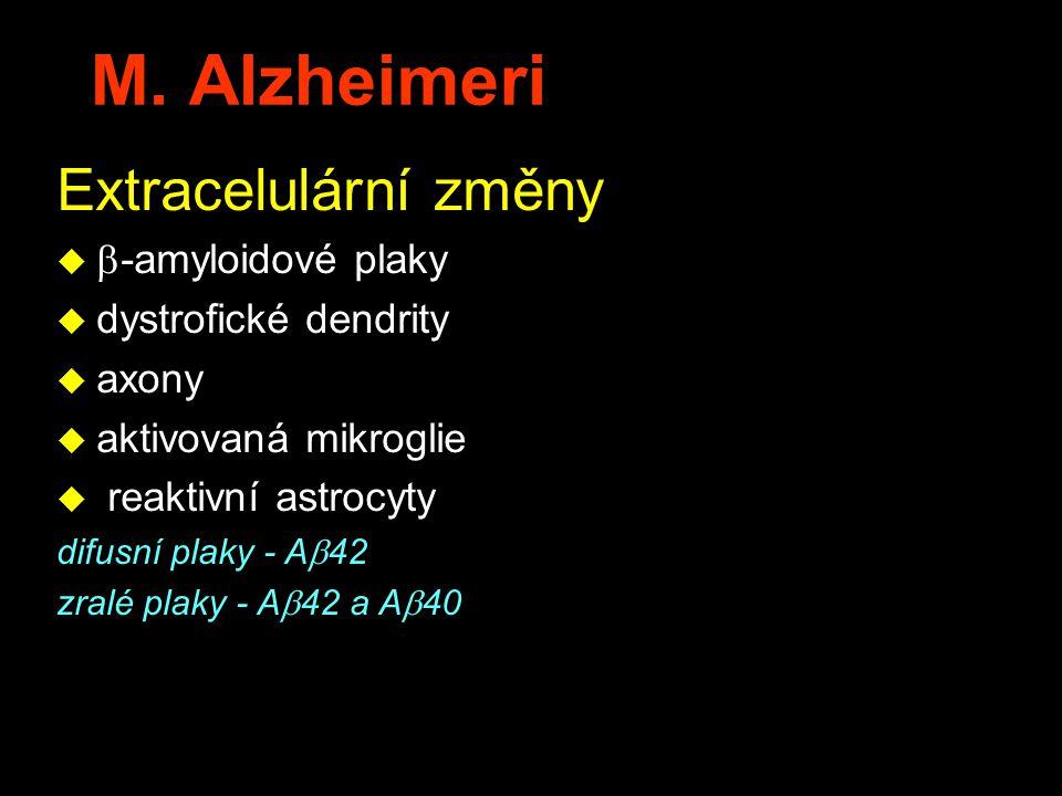 M. Alzheimeri Extracelulární změny -amyloidové plaky