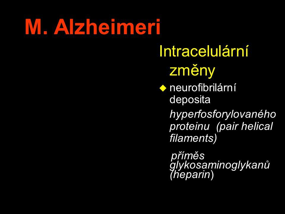 M. Alzheimeri Intracelulární změny neurofibrilární deposita
