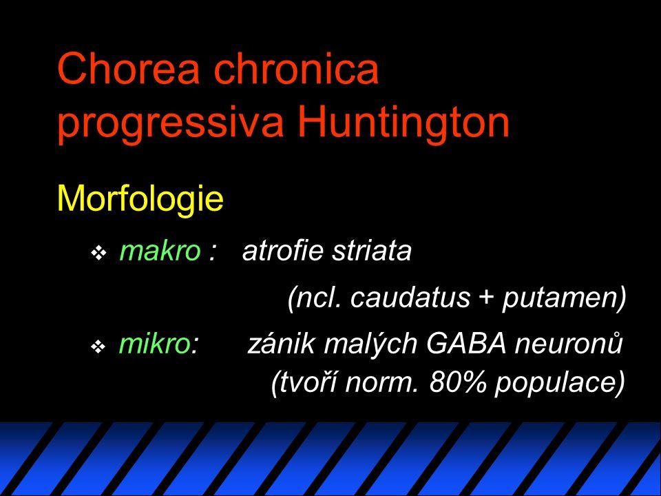Chorea chronica progressiva Huntington