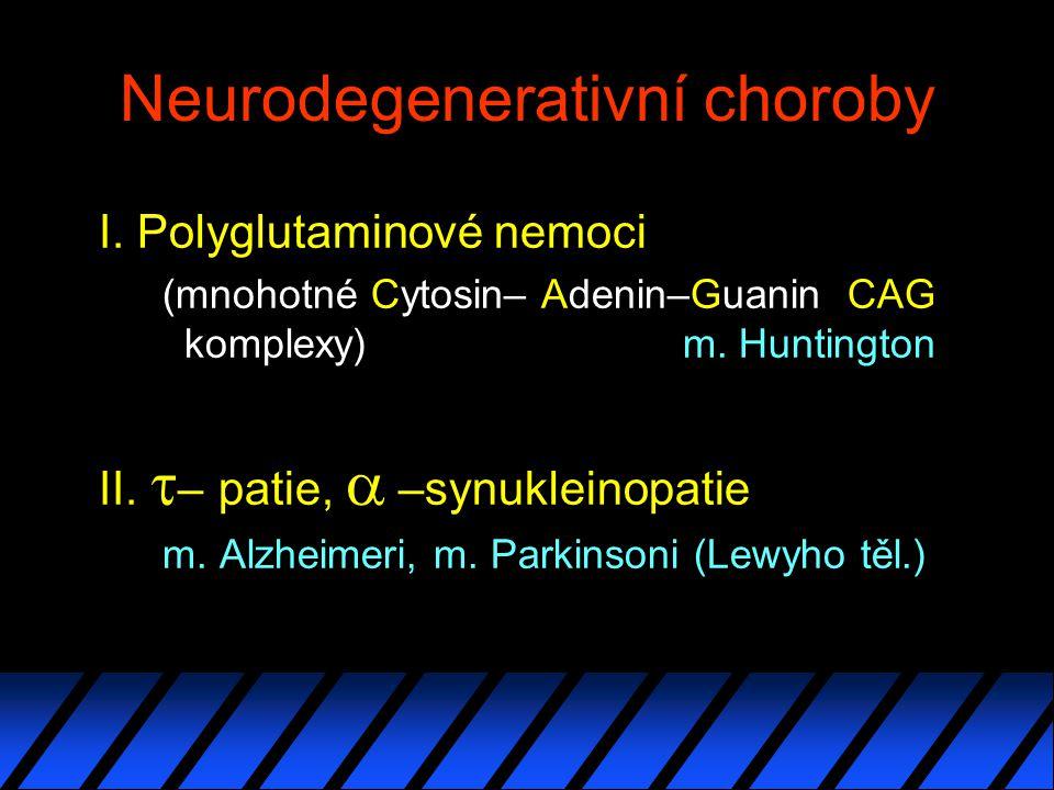 Neurodegenerativní choroby