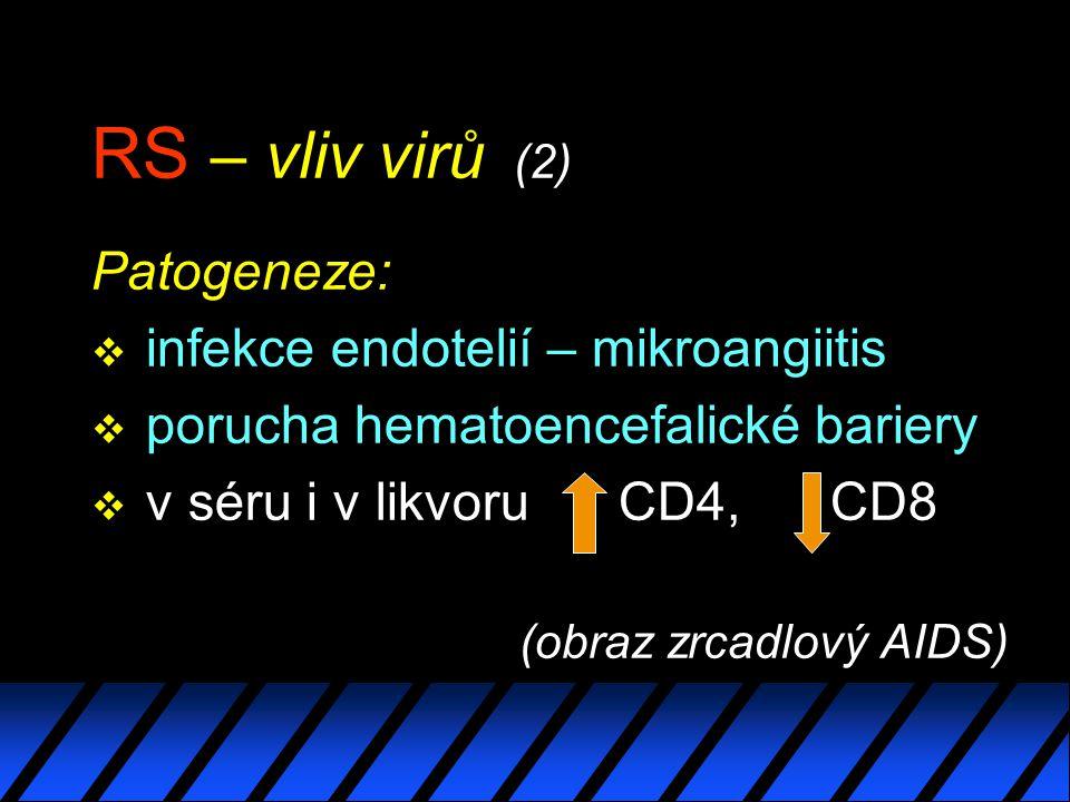 RS – vliv virů (2) Patogeneze: infekce endotelií – mikroangiitis