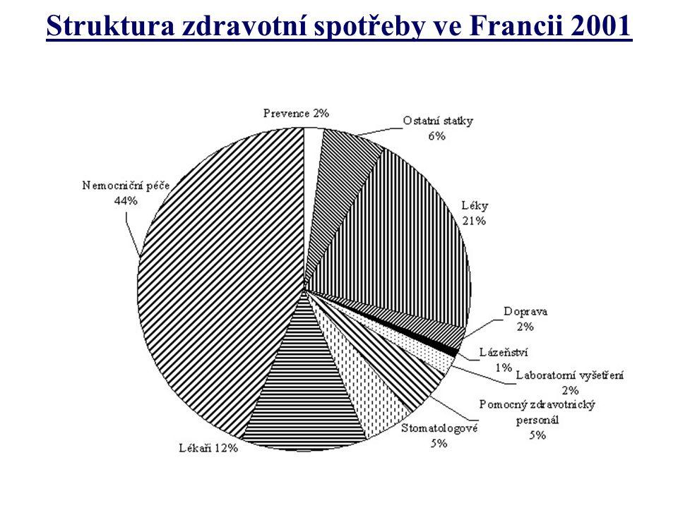 Struktura zdravotní spotřeby ve Francii 2001
