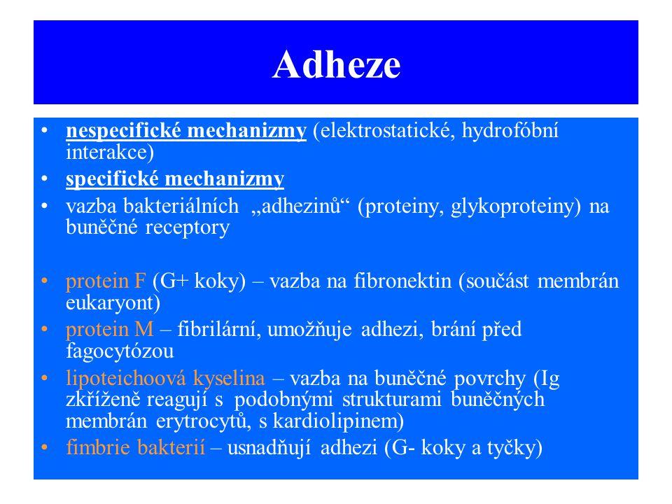 Adheze nespecifické mechanizmy (elektrostatické, hydrofóbní interakce)