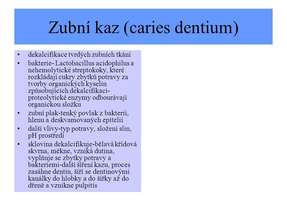 Zubní kaz (caries dentium)