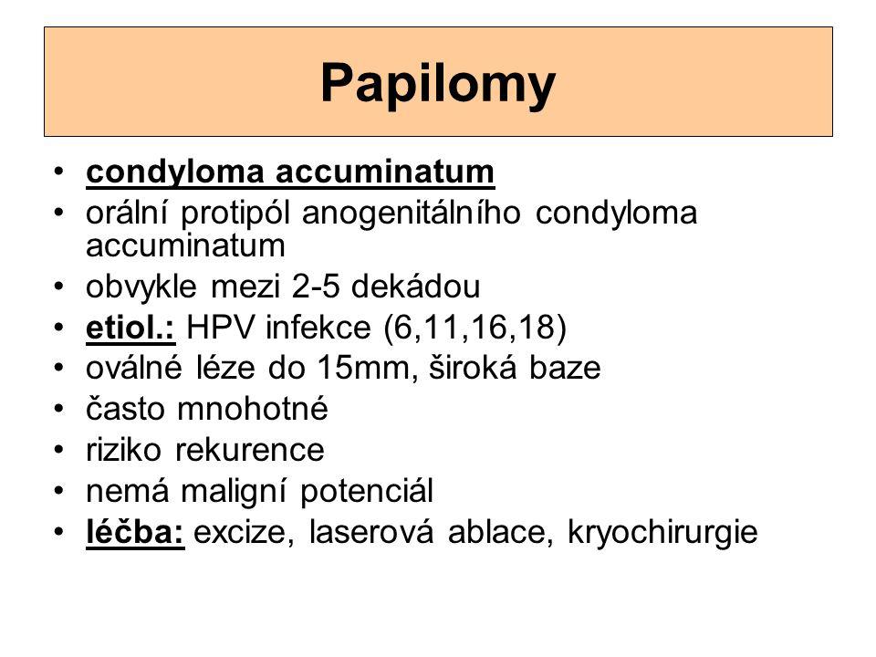Papilomy condyloma accuminatum