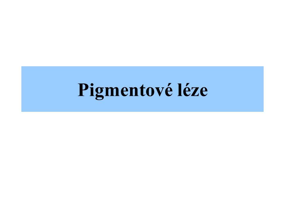 Pigmentové léze