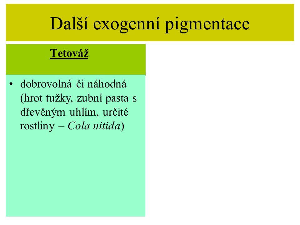 Další exogenní pigmentace