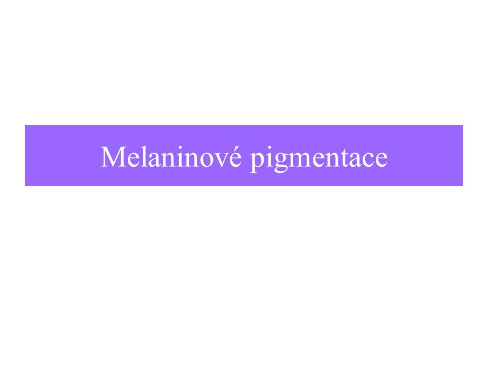 Melaninové pigmentace