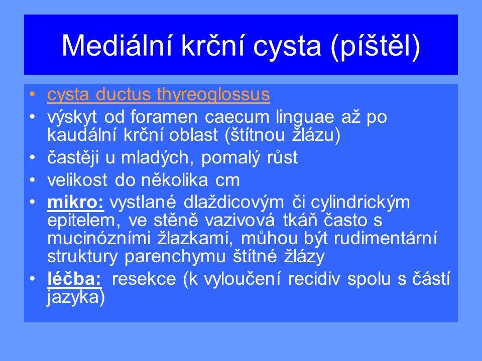 Mediální krční cysta (píštěl)