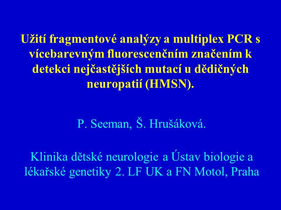 Užití fragmentové analýzy a multiplex PCR s vícebarevným fluorescenčním značením k detekci nejčastějších mutací u dědičných neuropatií (HMSN).