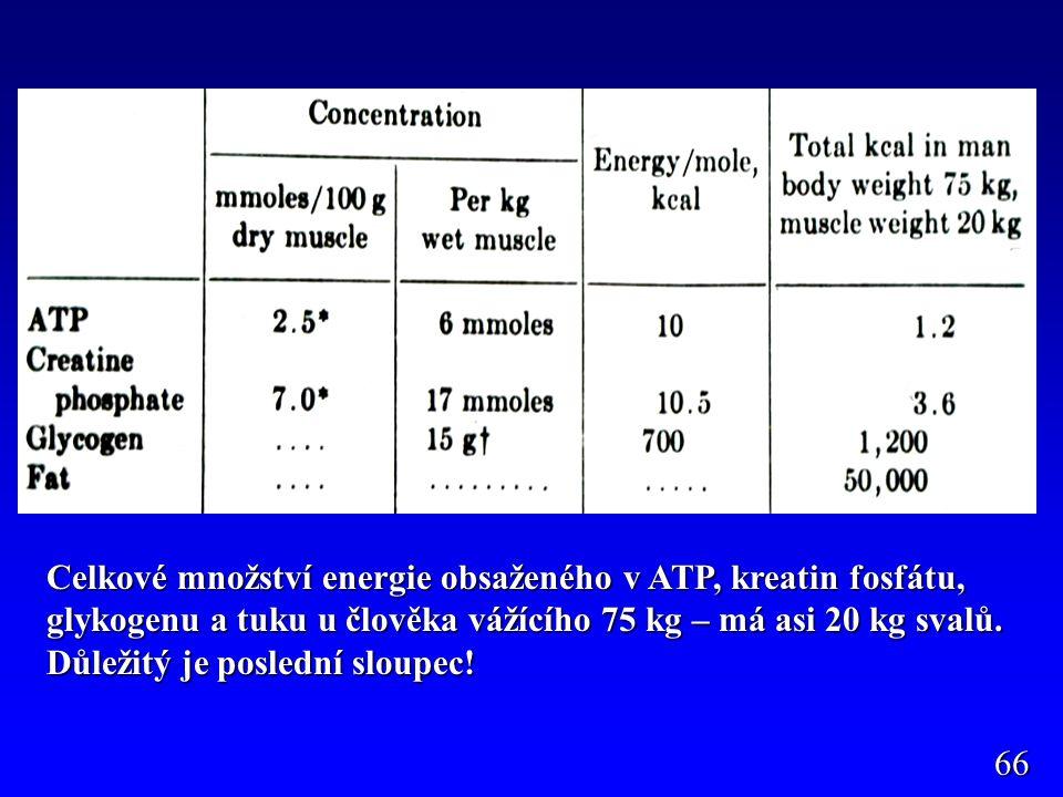 Pohotová energie v ATP a CF, velmi málo jen na sekundy práce, glykogen 1g 4,1 kcal (asi 300g v játrech a ve svalech), tuk 9,3 kcal (různé množství - % tuku – kaliperace).