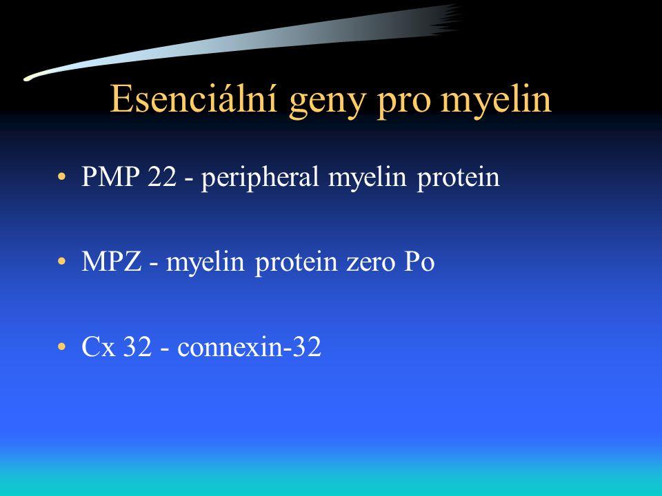 Esenciální geny pro myelin