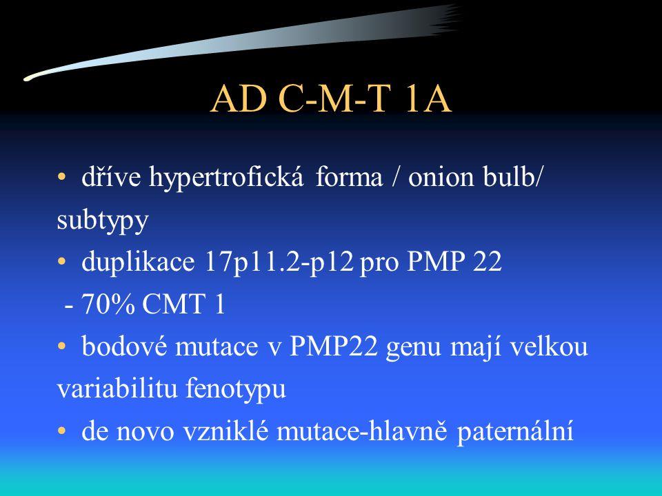 AD C-M-T 1A dříve hypertrofická forma / onion bulb/ subtypy