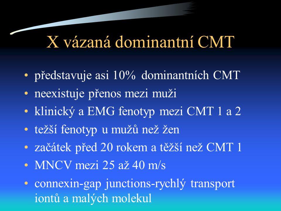 X vázaná dominantní CMT