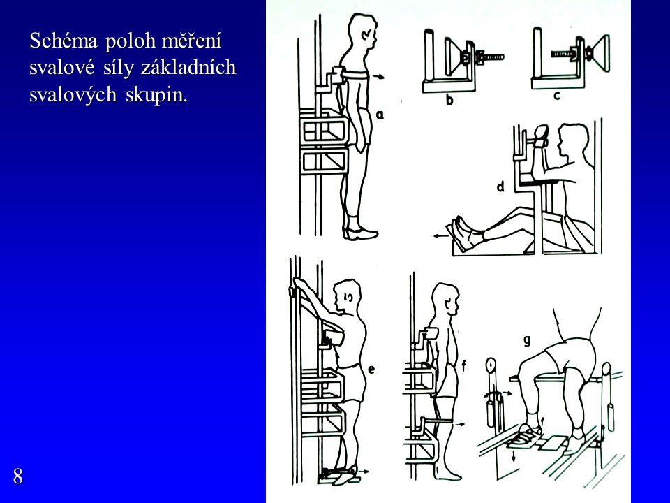 Schéma poloh měření svalové síly základních svalových skupin.