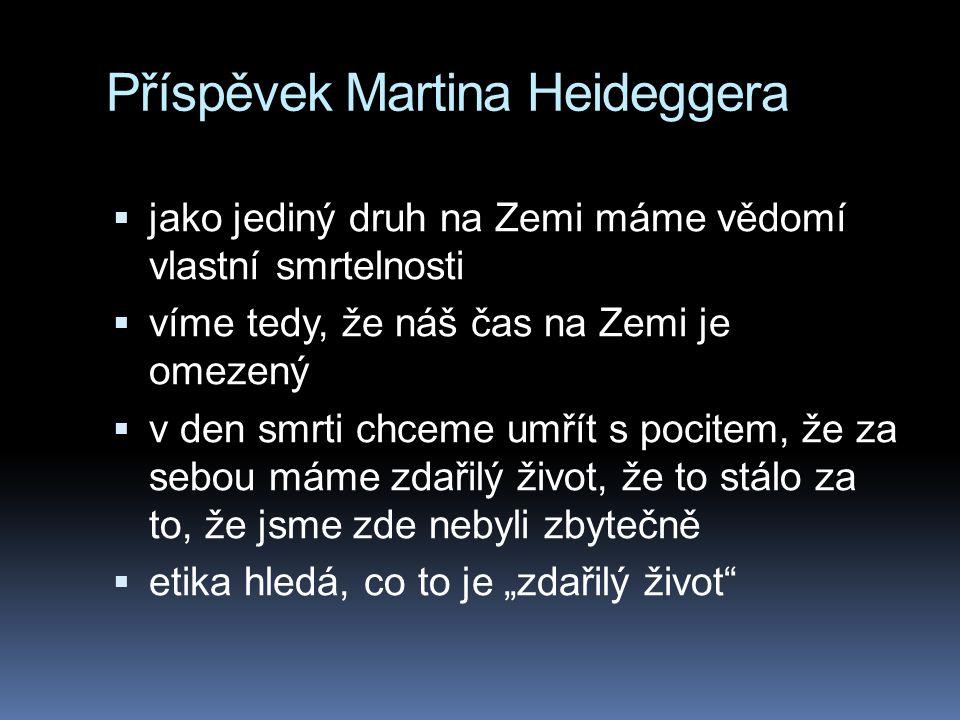 Příspěvek Martina Heideggera