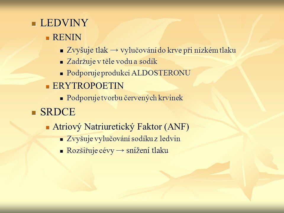 LEDVINY SRDCE RENIN ERYTROPOETIN Atriový Natriuretický Faktor (ANF)