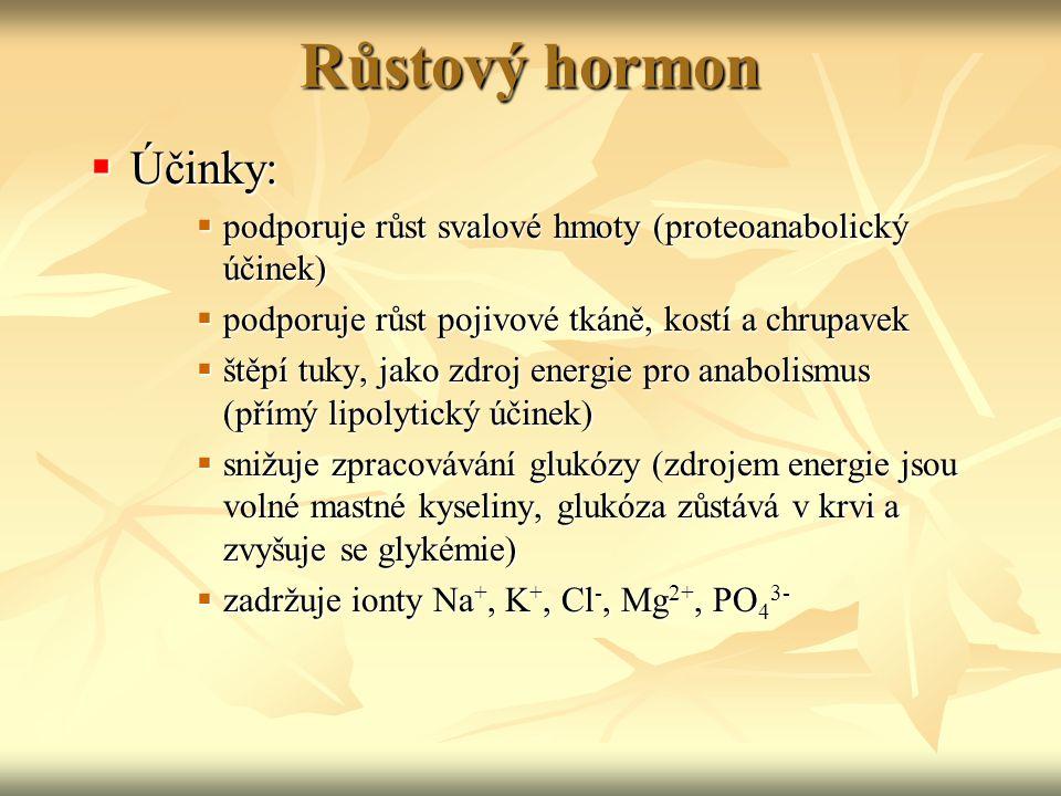 Růstový hormon Účinky: