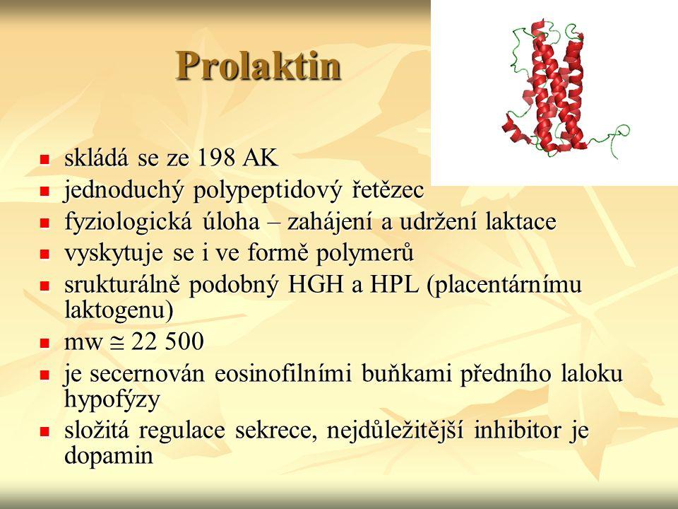 Prolaktin skládá se ze 198 AK jednoduchý polypeptidový řetězec