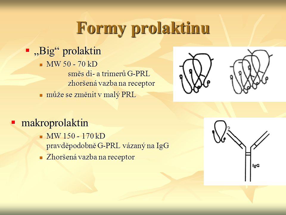 """Formy prolaktinu """"Big prolaktin makroprolaktin"""