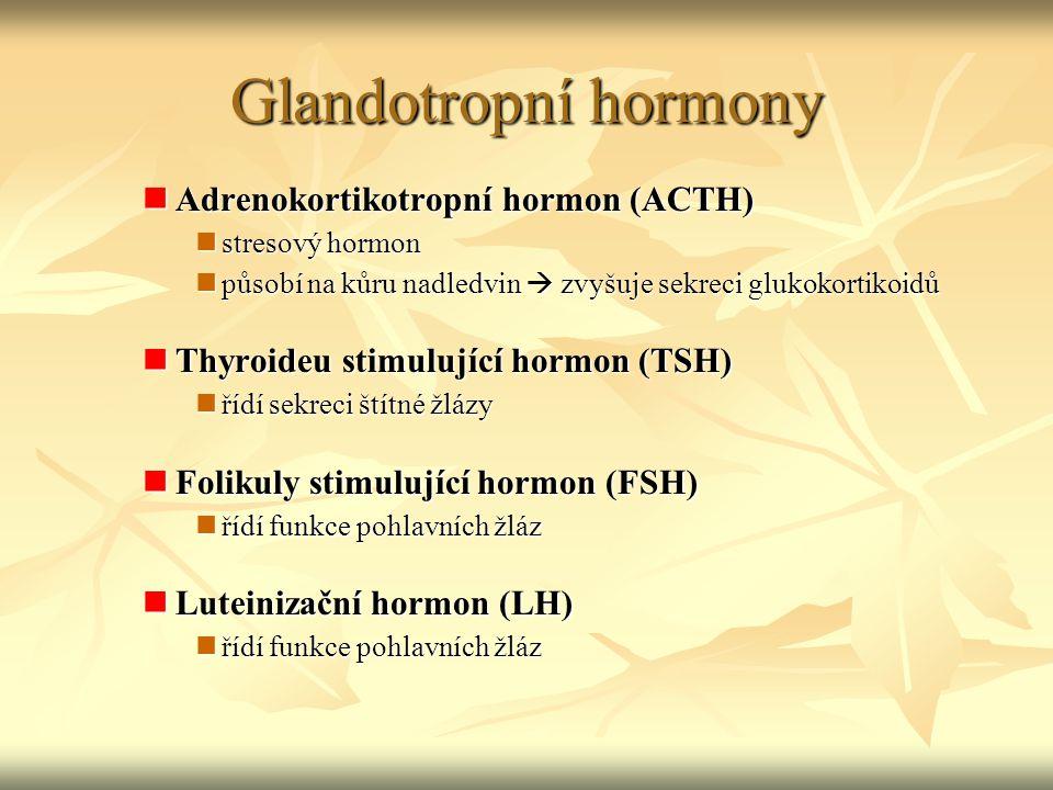 Glandotropní hormony Adrenokortikotropní hormon (ACTH)