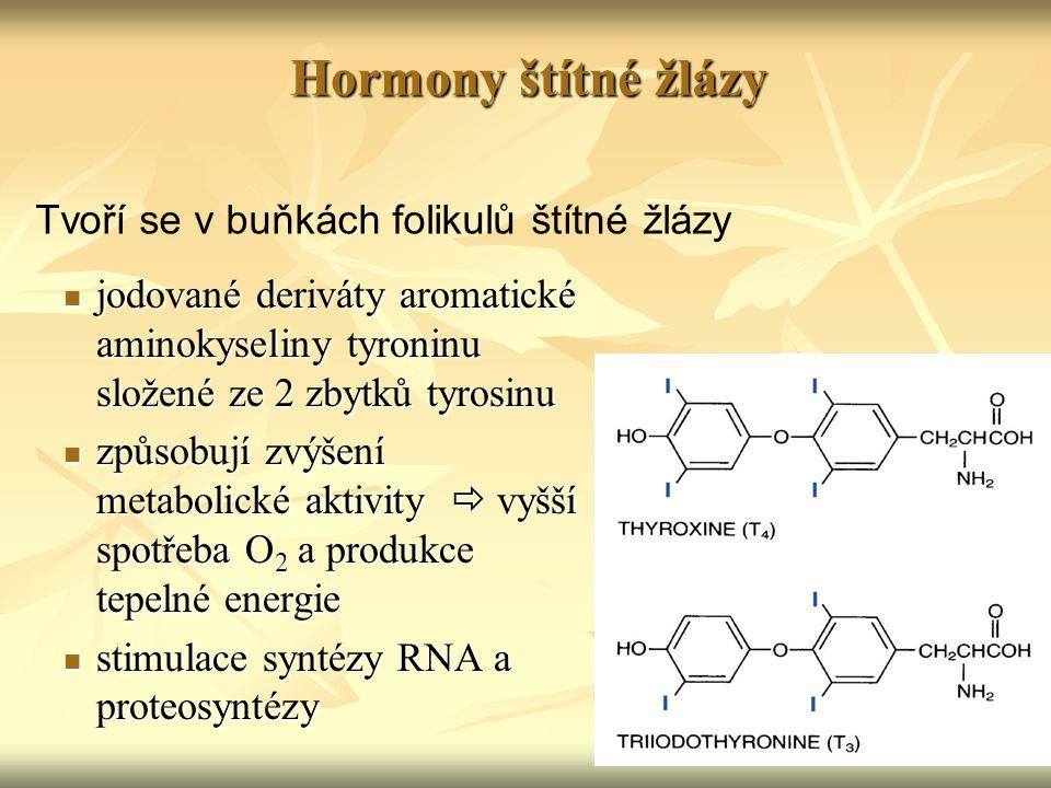 Hormony štítné žlázy Tvoří se v buňkách folikulů štítné žlázy