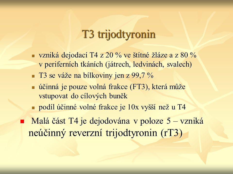 T3 trijodtyronin vzniká dejodací T4 z 20 % ve štítné žláze a z 80 % v periferních tkáních (játrech, ledvinách, svalech)